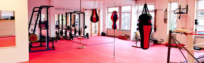 Kickboxing Peter Aerts